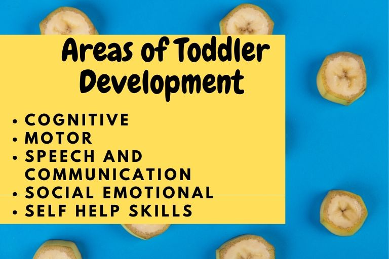 areas of toddler development