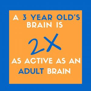 Child development Fact oid: a 3 year olds brain is twice as active as an adult brain